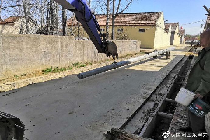 辛寨镇张家焦头村运送电杆开展农网改造